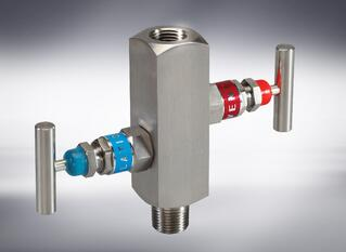 DOUBLE BLOCK & BLEED VALVES.jpg